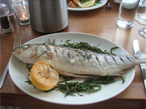 Locally-caught fresh sea bass at the Seabreeze restaurant